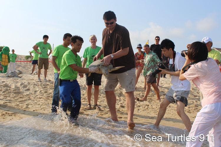 Sea Turtles 911: Saving Sea Turtles In The South China Sea