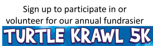 Turtle Krawl 5k