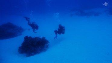 Zanzibar Scuba Divers 1366 x 768
