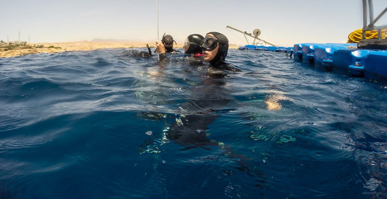 No Limits Freediving In Sharm El Sheikh: Gallery