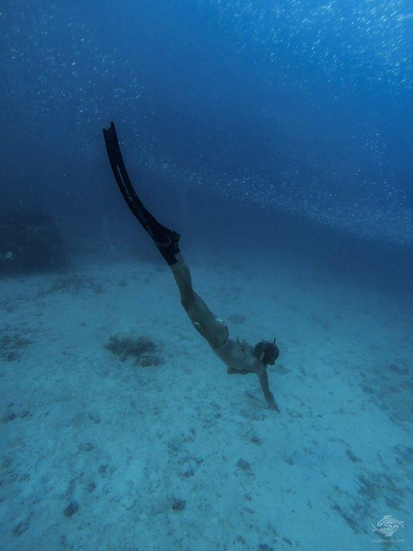 freediving in zanzibar
