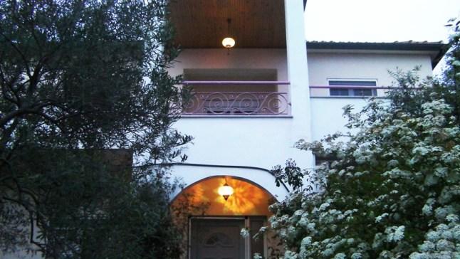 Сад с оливковыми деревьями вокруг виллы Релакс