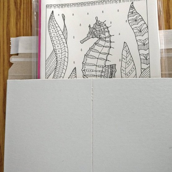 Coloring Card set shown in mailer