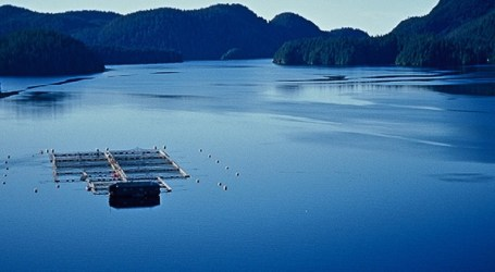 A new era for salmon farming in British Columbia