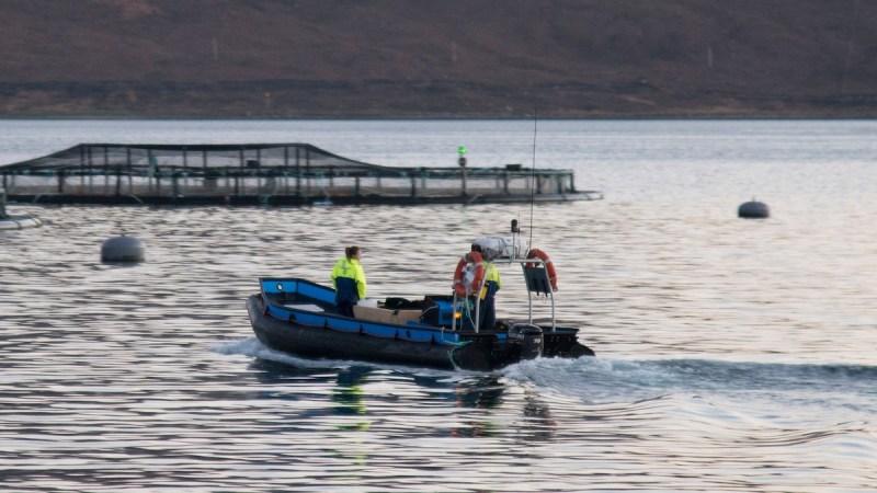 Aquaculture, SeaWestNews, BC Aquaculture, Aquaculture In Canada