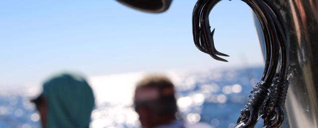 Sea Winder Fishing Hooks