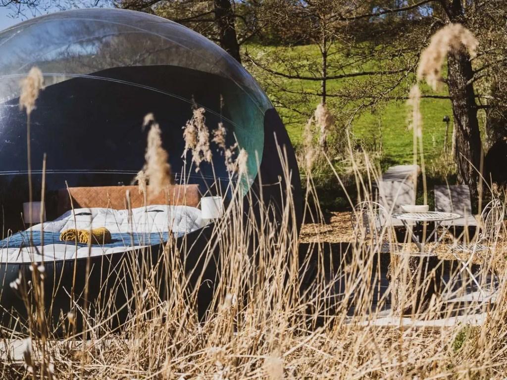 nids des marais la bulle hébergement insolite à ciney