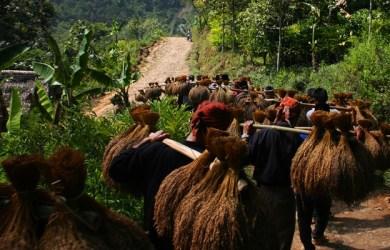 Kasepuhan Kampung Ciptagelar Sukabumi