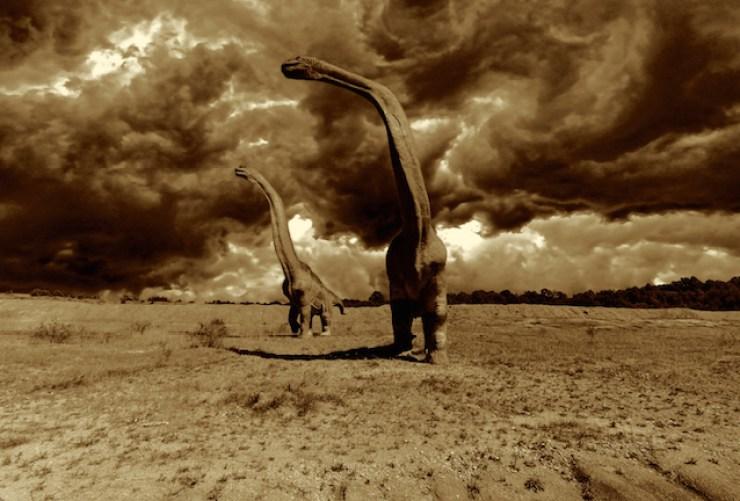dinosaure-grand-groupe
