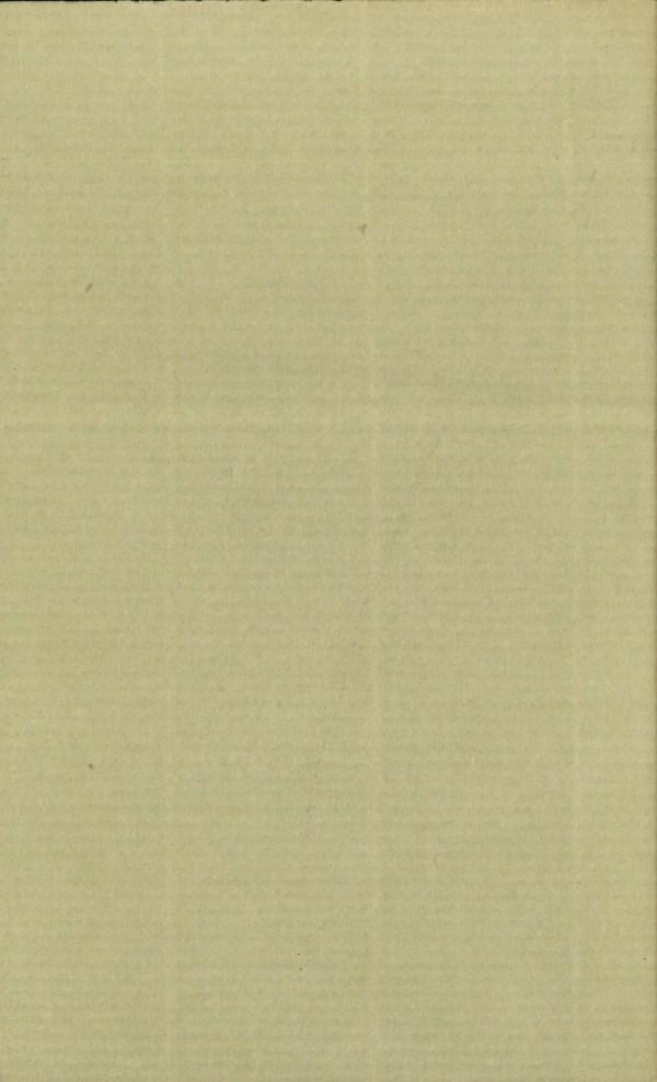 Das Abenteuerbuch in der Vergangnheit - Rückencover