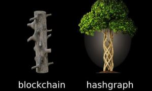 what-is-hashgraph