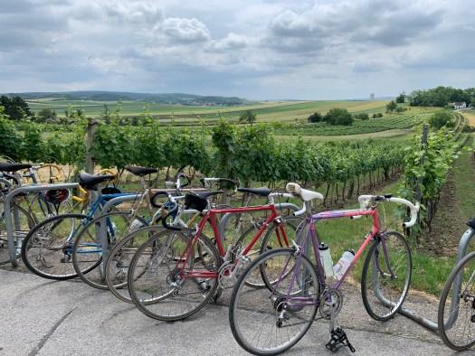 InVeloVeritas Wein und alte Rennräder