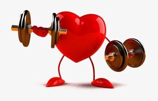 Coeur en activité
