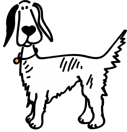 Setter, Brittany and Pointer Rescue Asturias