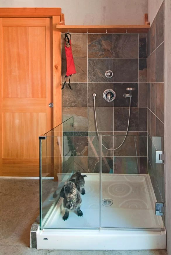 Outstanding Dog Shower Ideas Amp Pet Washing Stations Home Remodeling Contractors Sebring