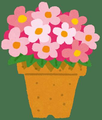 flower_hachiue.png