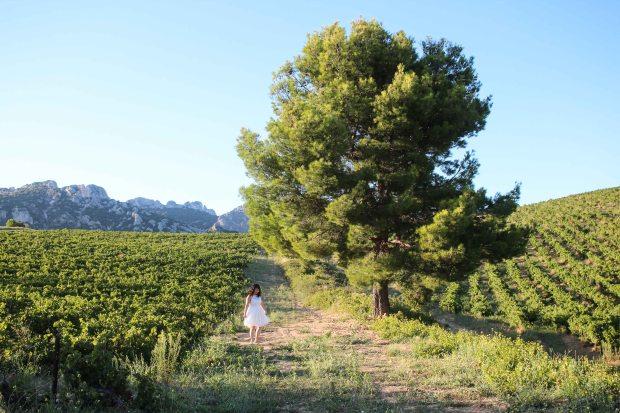 Twirling at Domaine de Coyeux