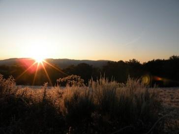 Dawn in Chissey