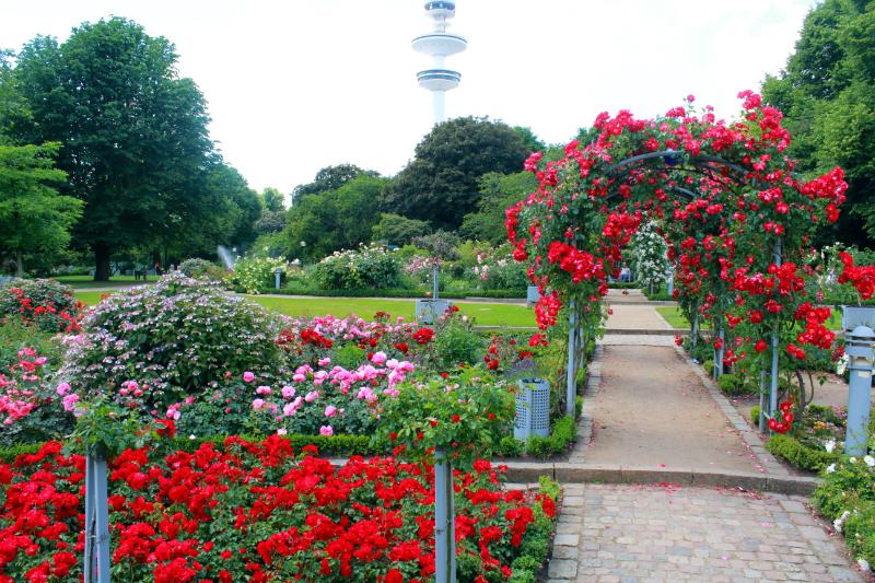 Planken en Blomen in Hamburg