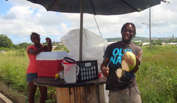 Coconut Water - the Healthy Roadside Drink