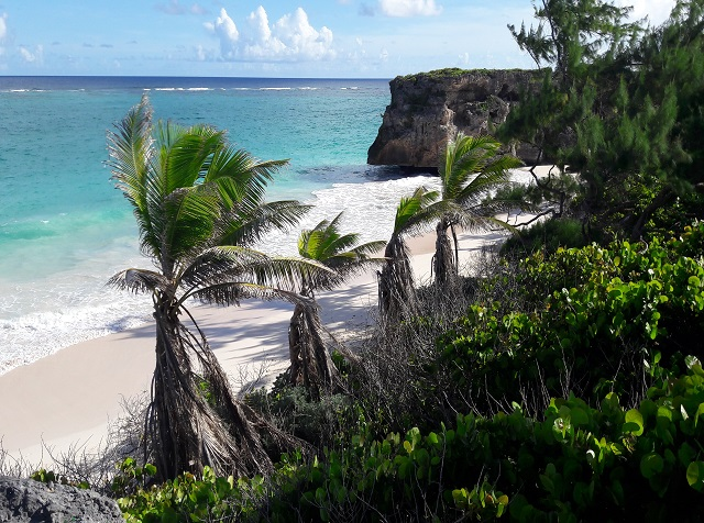 Ginger Bay, Barbados