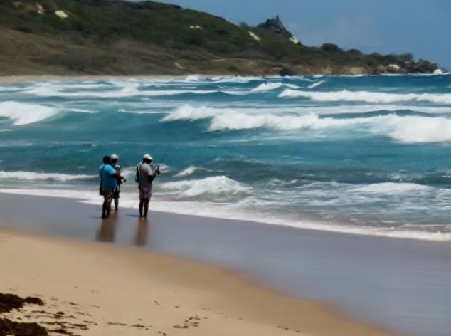 walk a windswept Barbados beach, locals surfing