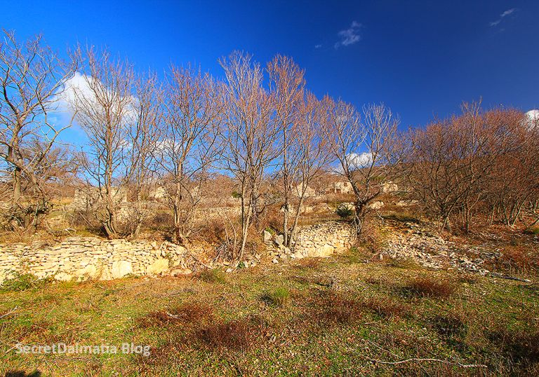 winterdaysinbukovica307