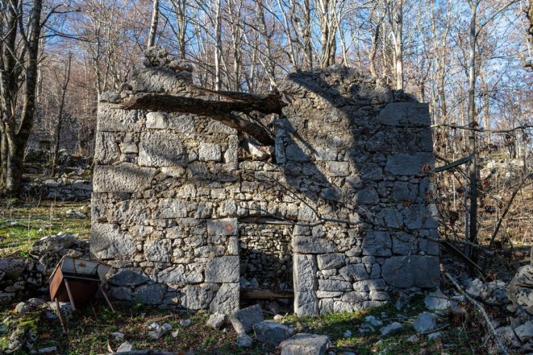 Ruins at Skorupovac, Velebit now taken by woods