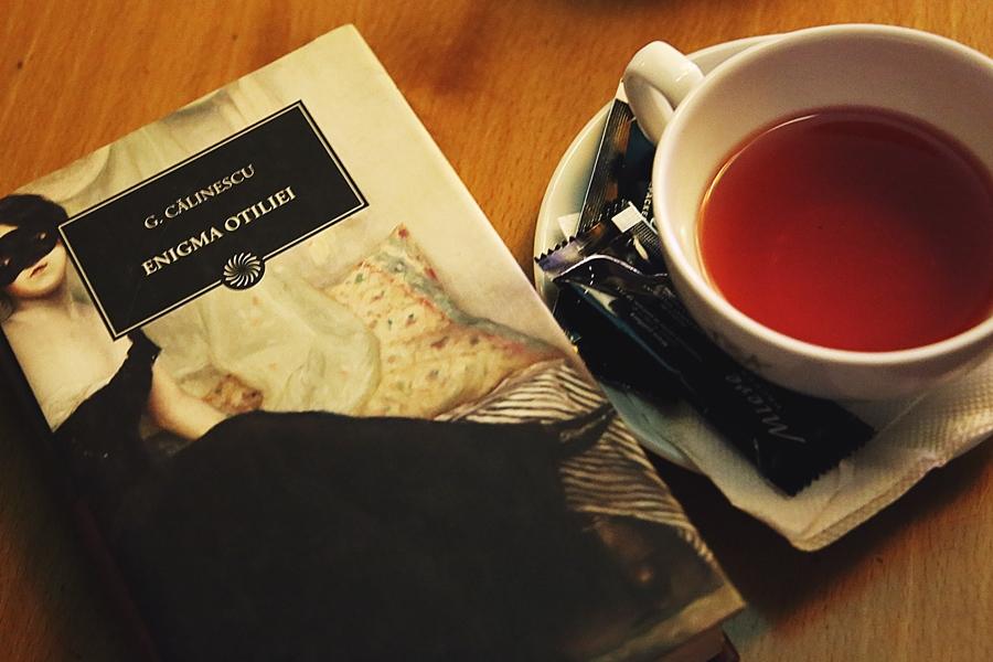 carte clasica enigma otiliei ceai fructe barissimo