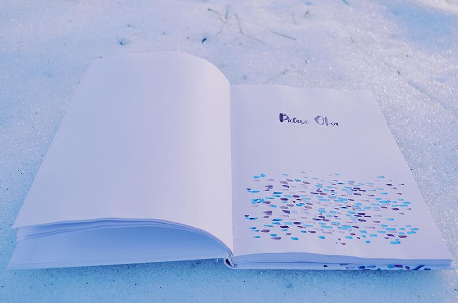carte zapada 8 povestiri de pe calea mosilor adina popescu editura arthur