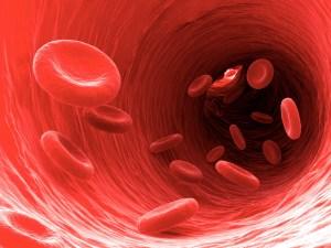 BloodViscosity