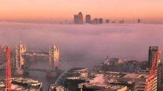 fog0feature-bodz