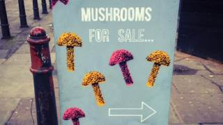 hipster-london-funny