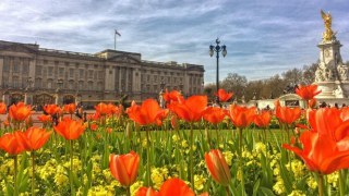 april-london-month-things-to-do