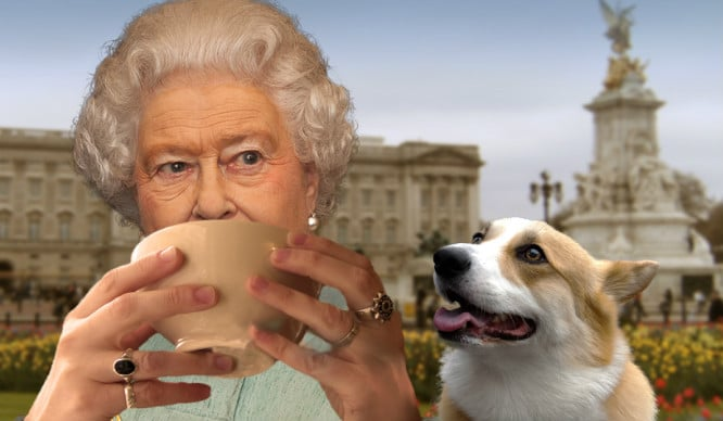tea-with-queen-corgi-buckingham-palace