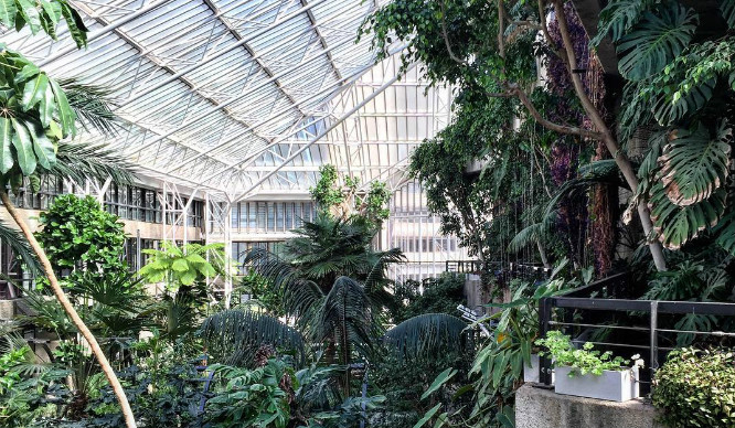 barbican-conservatory
