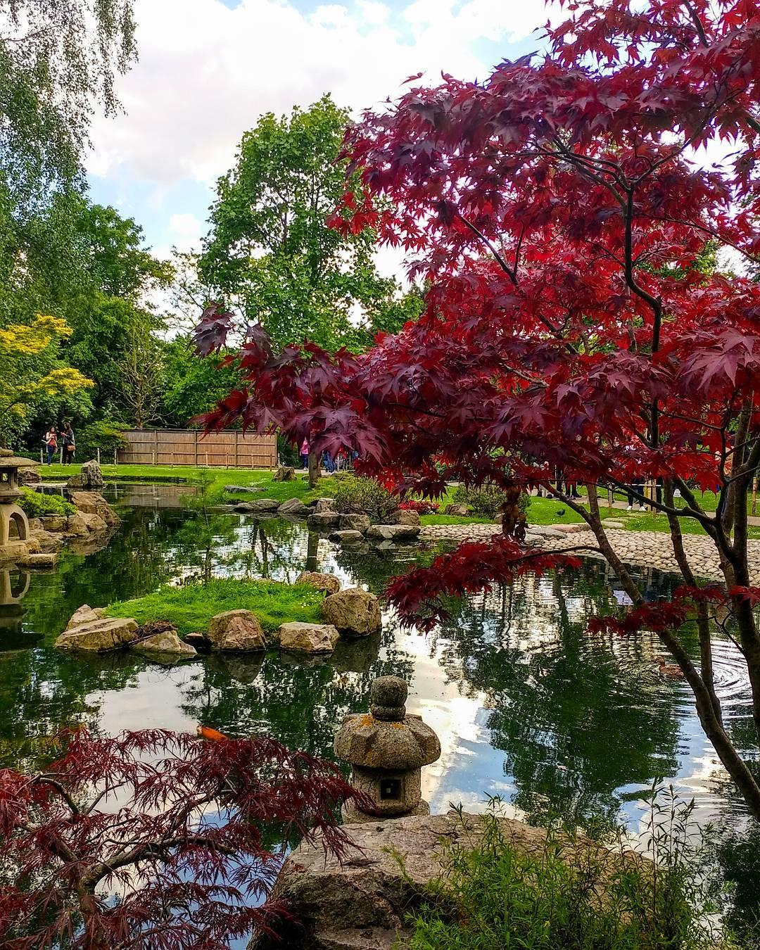 kyoto-garden-summer