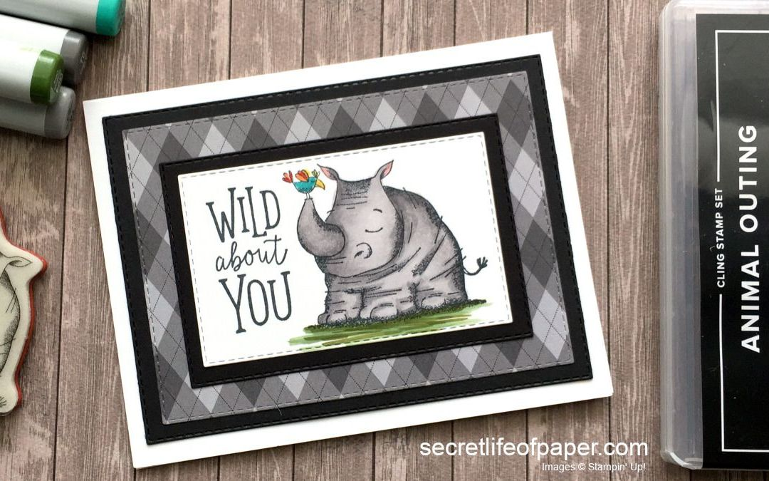 Animal Outings – Wild About You