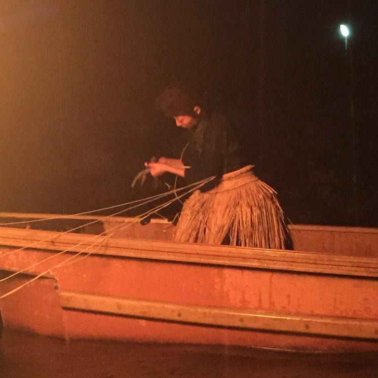 Cormorant fishing in Uji