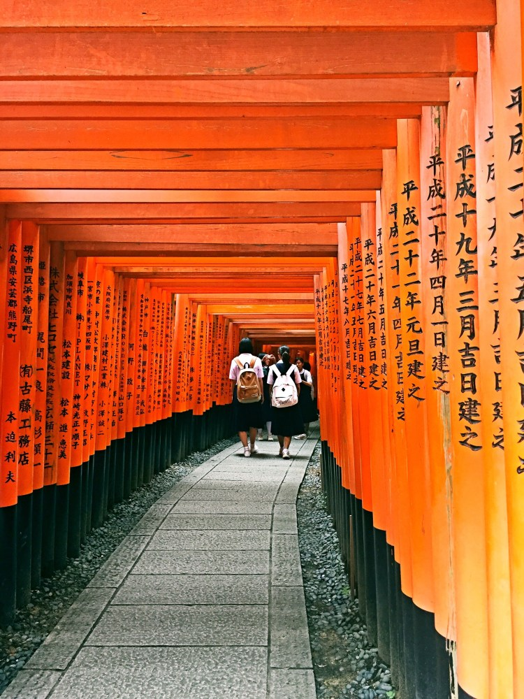 Journey through the torii gates