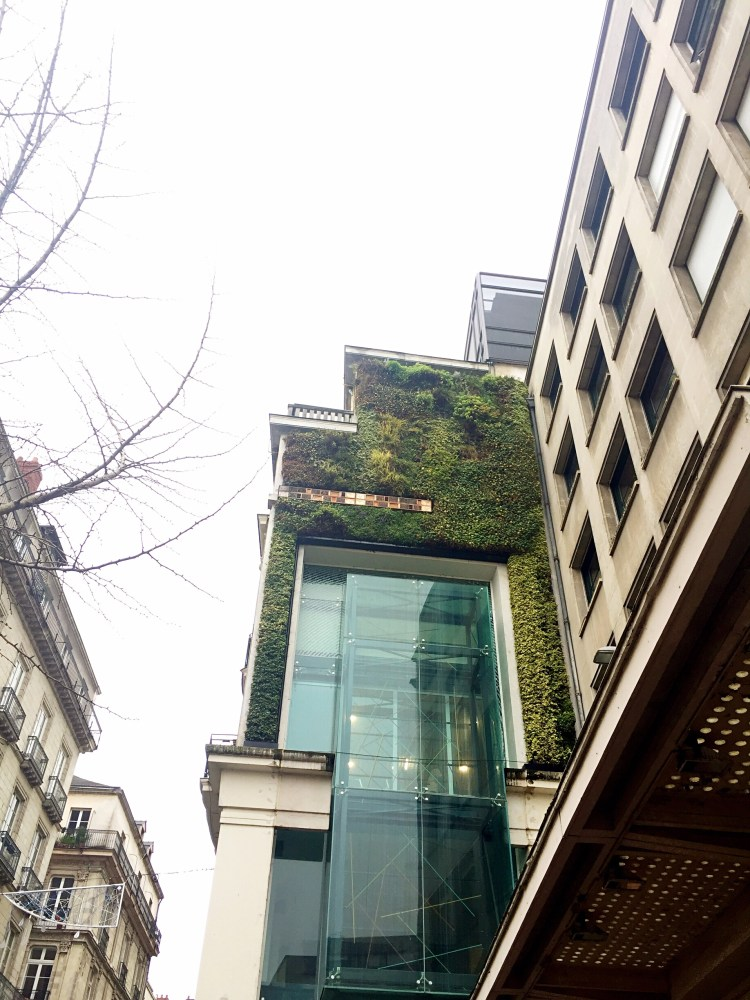 Greenery on building, Nantes