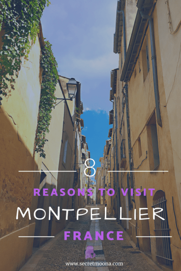 Reasons to visit Montpellier, France - Things to do in Montpellier
