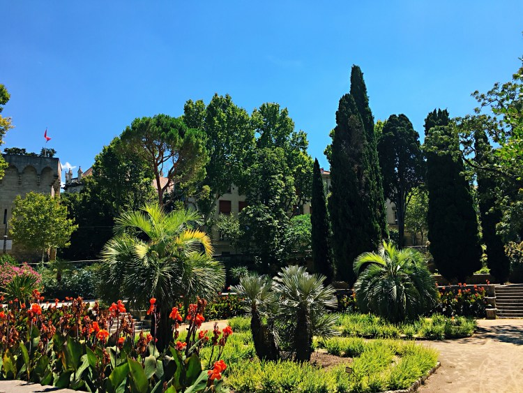 Jardin des Plantes - Things to do in Montpellier