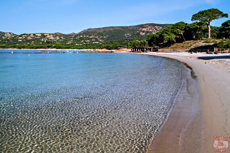 Palombaggia beach, Corsica - Nice beaches in France