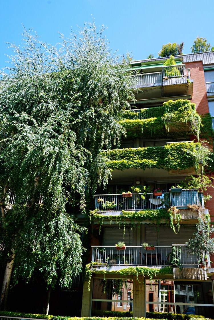 Green house covered in climbing plants, Toulouse - Visit Occitanie