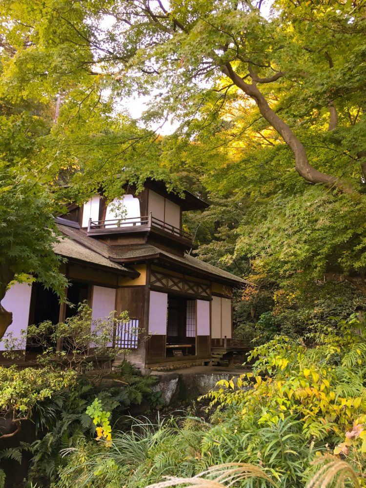 Sankeien Garden in Yokohama is one of the best attraction the city has to offer: a beautiful natural garden full of old cultural, traditional and architectural treasures. #Yokohama #Japan #Garden