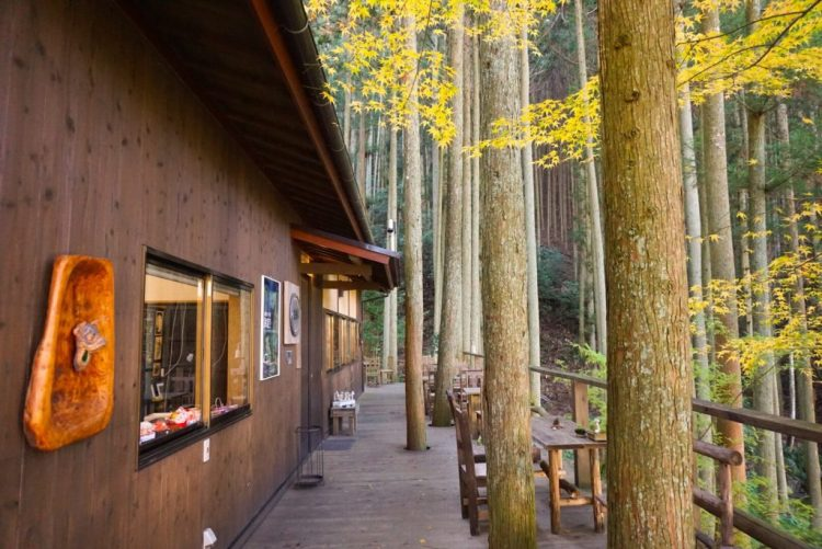 Looking for secret treasures? Kokemushiro Moss Garden Cafe, a hidden gem in the heart of Ehime Prefecture - Japan.