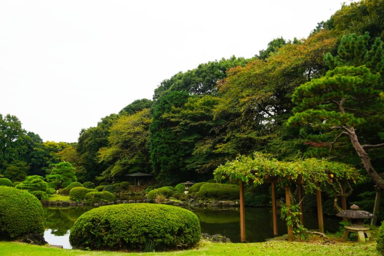 13 reasons to visit Japan in autumn - Japanese gardens