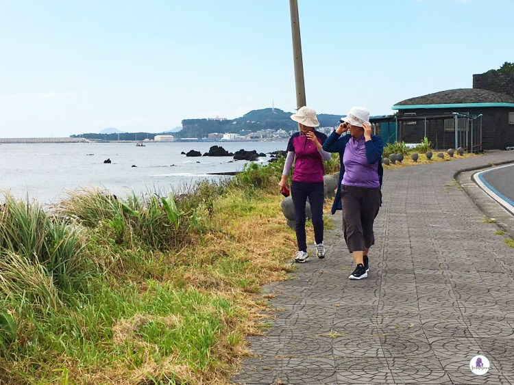Jeju itinerary: Olle Trails