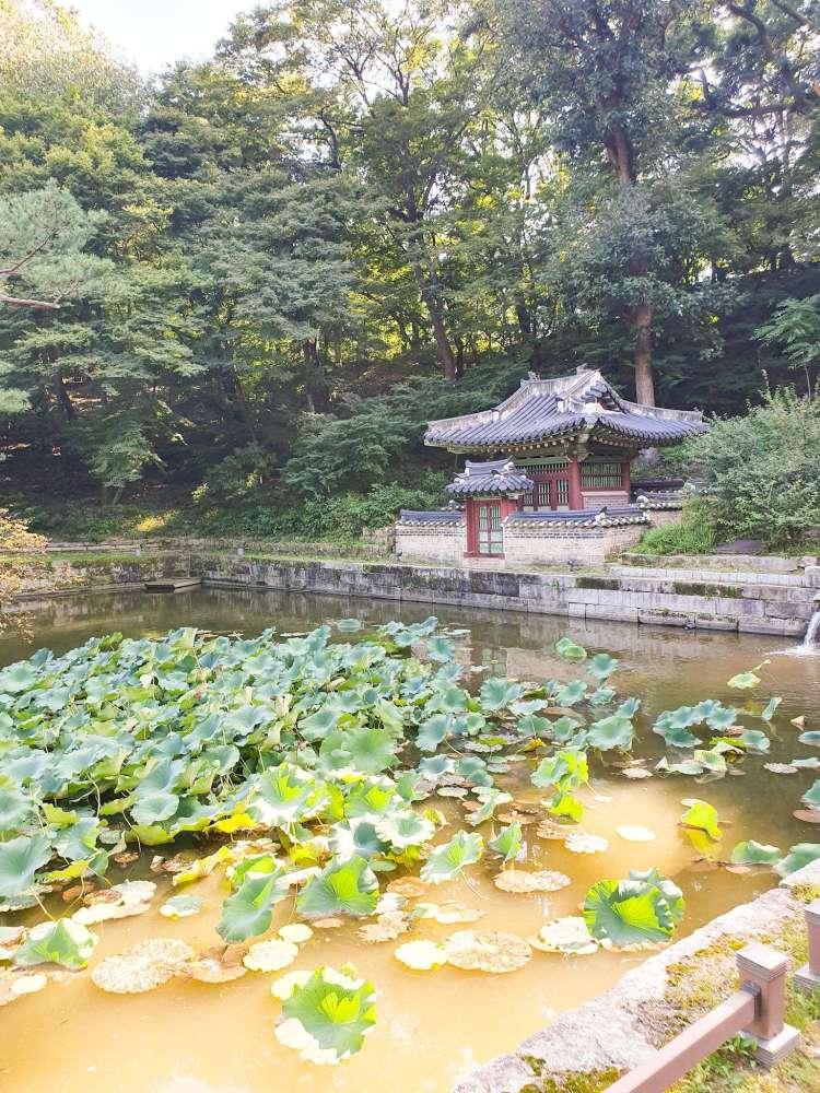 Changdeokgung Palace and its Secret Garden: Huwon